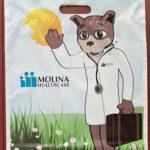 Molina Bag